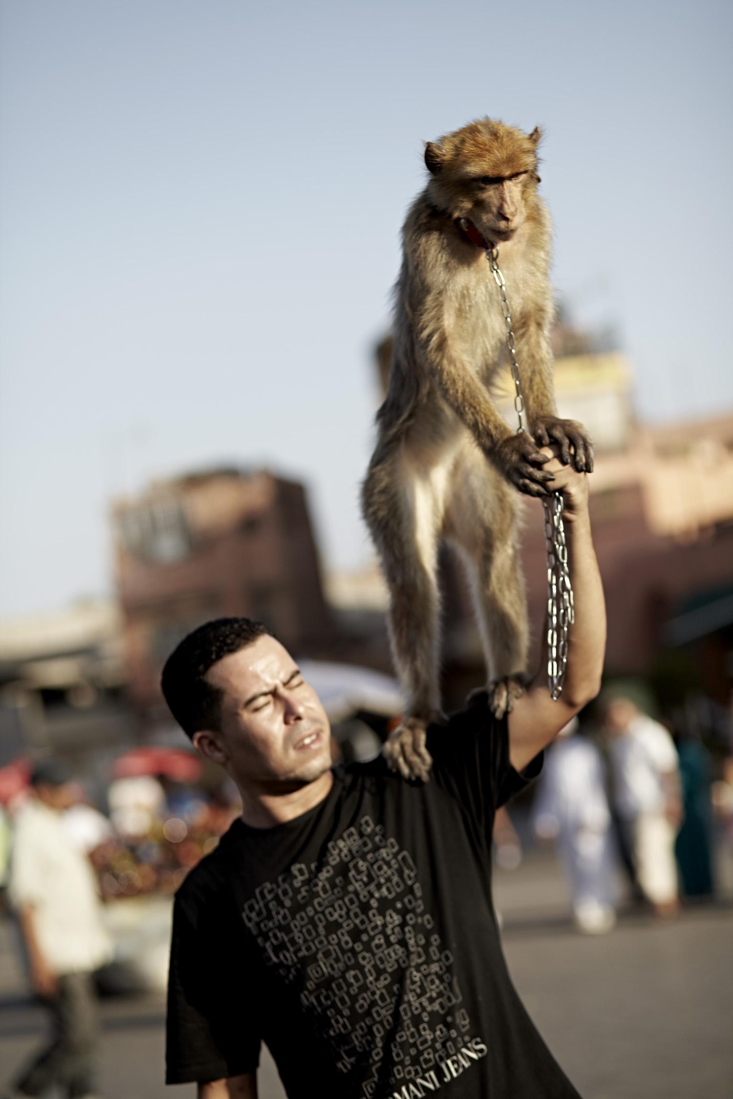 Marrakech_2013-026