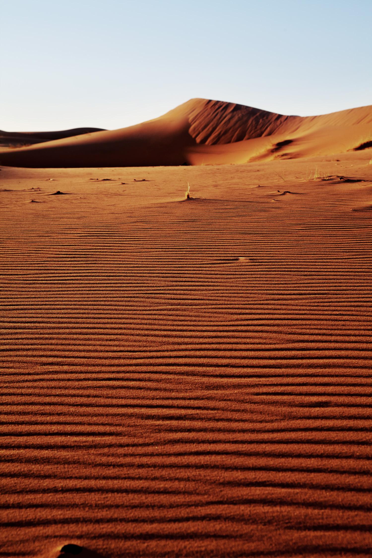 Sahara_2013-134new