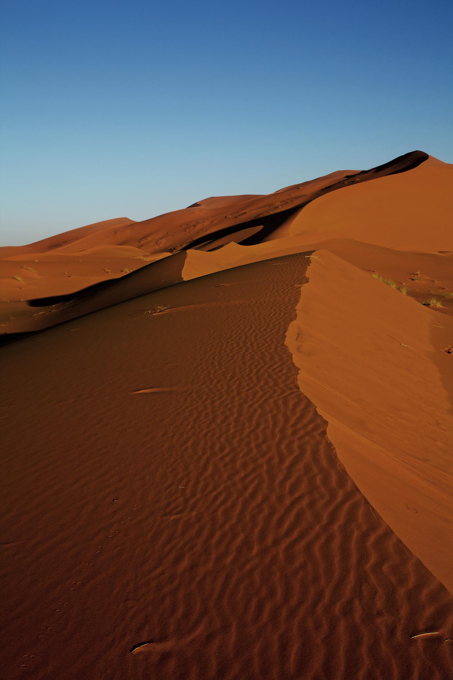 Sahara_2013-147