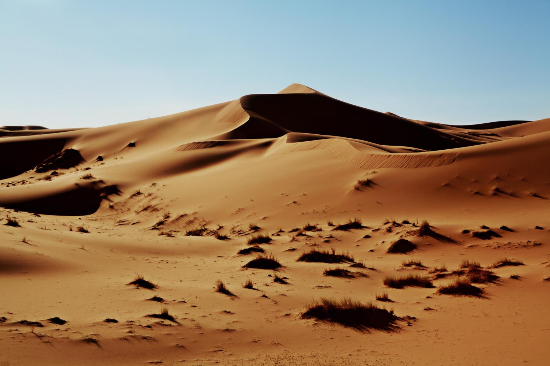 Sahara_2013-171new