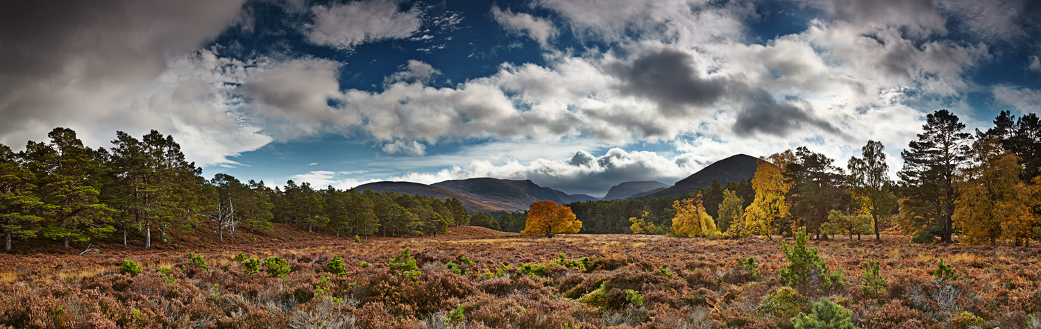 Rothiemurchus Autumn Stitch_final