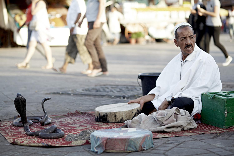Marrakech_2013-043