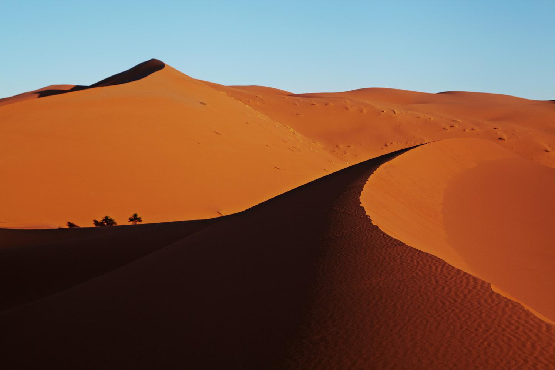 Sahara_2013-128new