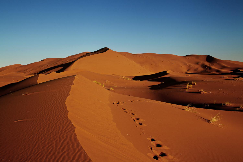 Sahara_2013-146new
