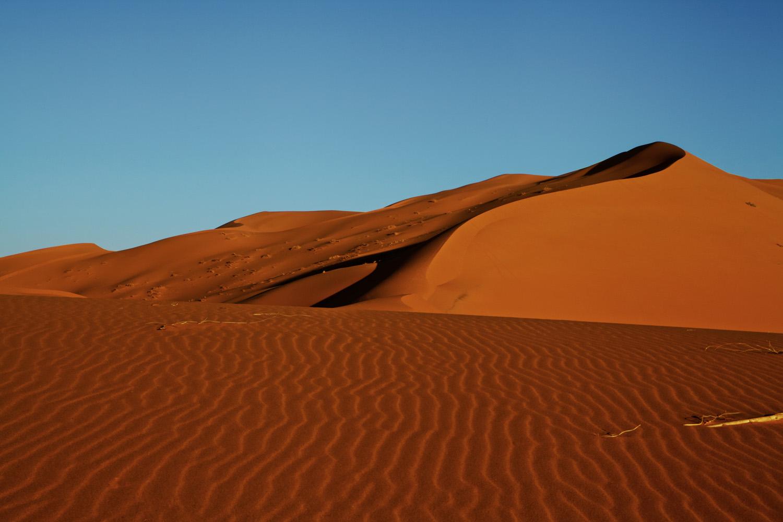 Sahara_2013-156new