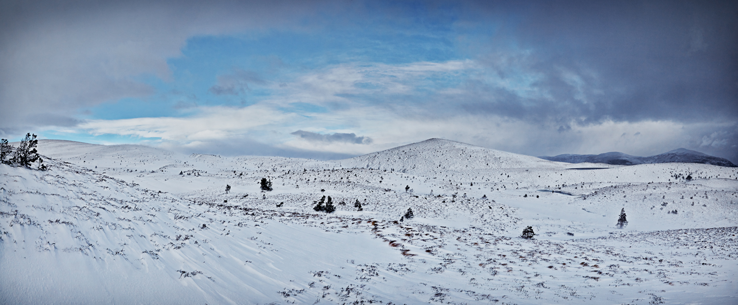Airgiod-meall Stitch