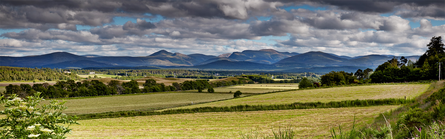 July View of Cairngorms